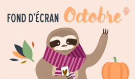 vignette image paresseux fond d'ecran calendrier 2016 paresseux sloth