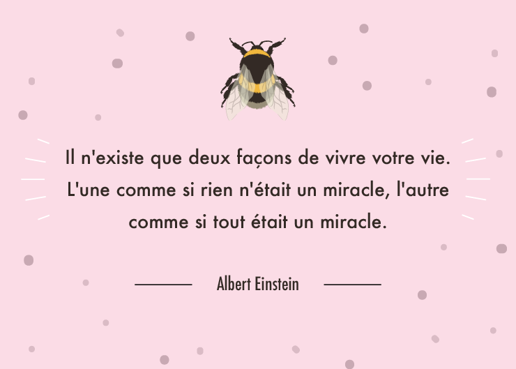 citation miracle albert einstein illustratrée