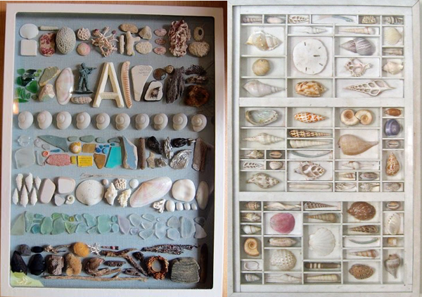diy coquillage creativite