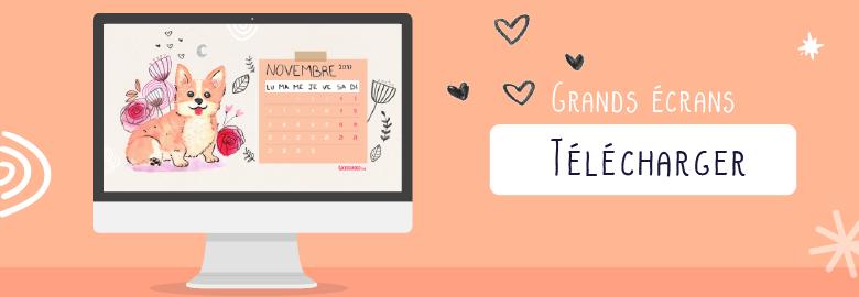 telecharger goodie gratuit illustration corgi calendrier novembre 2017 desktop