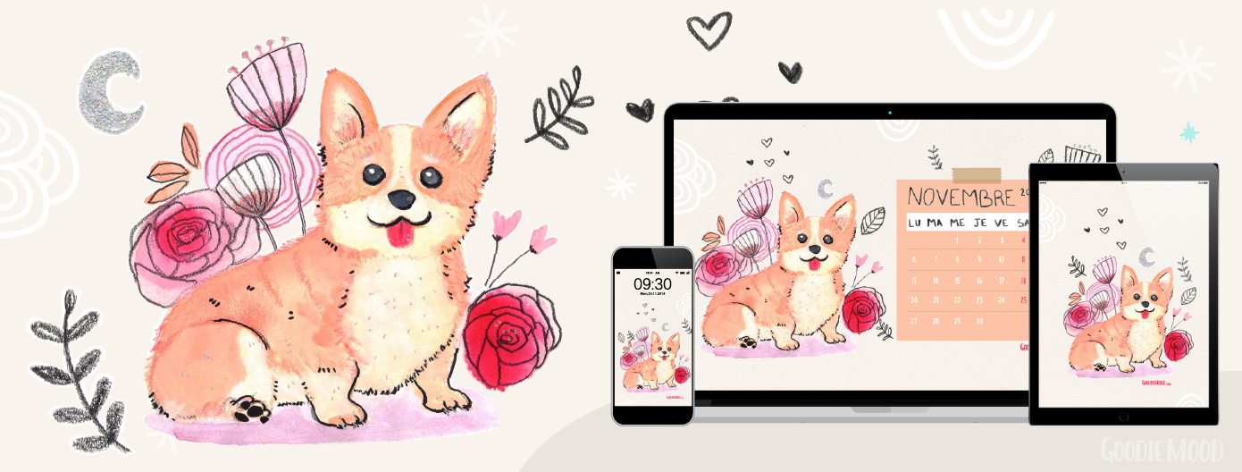 illustration wallpaper corgi calendrier 2017 novembre