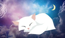 mieux-dormir-vignette