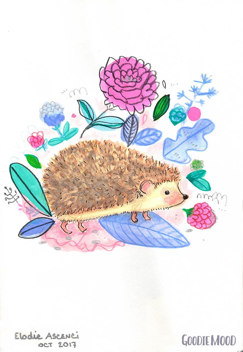 illustration d'un herisson à l'aquarelle et aux crayons de couleurs