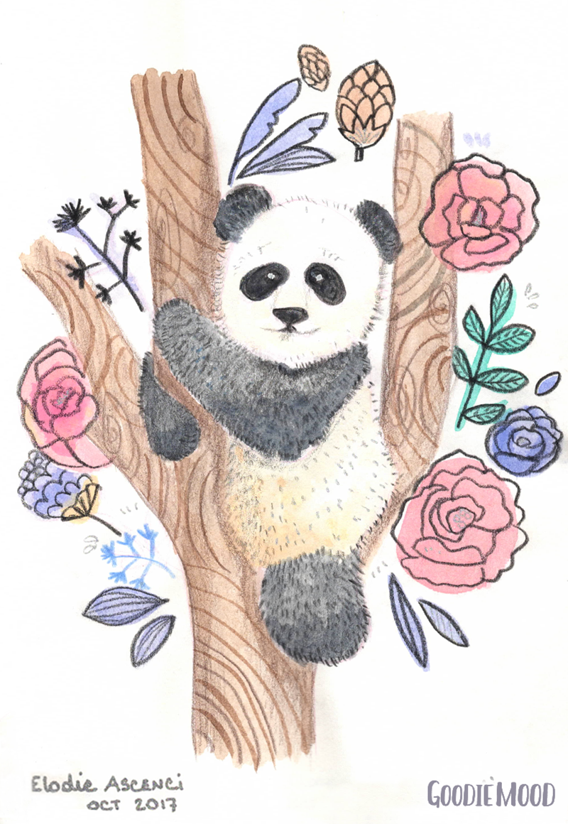 illustration d'un panda à l'aquarelle et aux crayons de couleurs