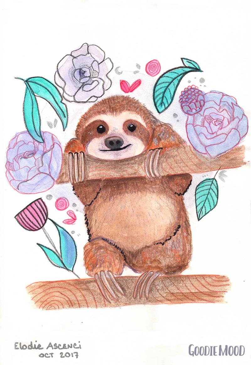 illustration d'un paresseux à l'aquarelle et aux crayons de couleurs