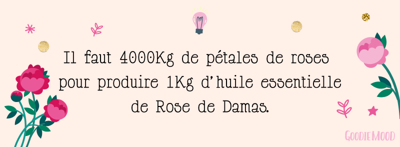 Bienfaits des huiles essentielles : Il faut 4000kg de pétales de roses pour faire 1 litre d'huile essentielle de Rose de Damas