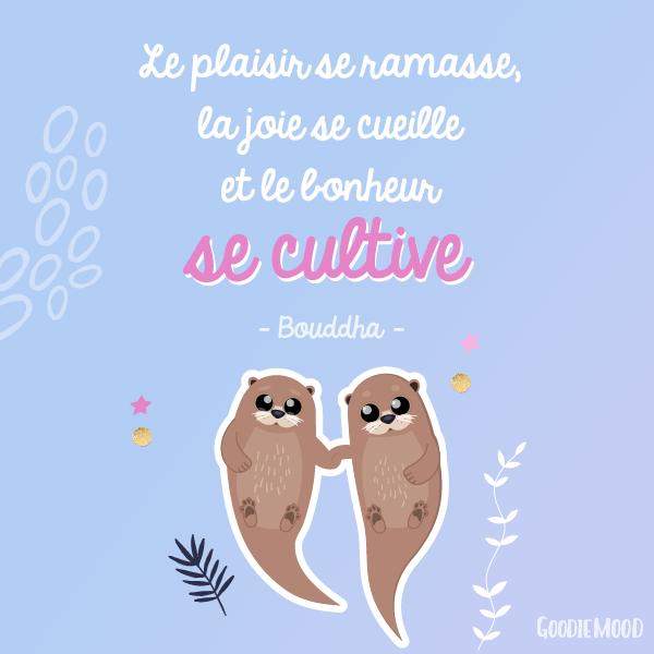 """""""Le plaisir se ramasse, la joie se cueille et le bonheur se cultive."""" Bouddha 💫 50 citations inspirantes pour rester motivée et être de bonne humeur ! ⭐️ Sur Goodie Mood, le blog Feel Good et Créativité 💗 #citation #proverbe #blog #illustration #graphisme #designgraphique #inspiration #motivation #bienetre #bonnehumeur #optimisme #positif #phrases #fille #girly #printable"""