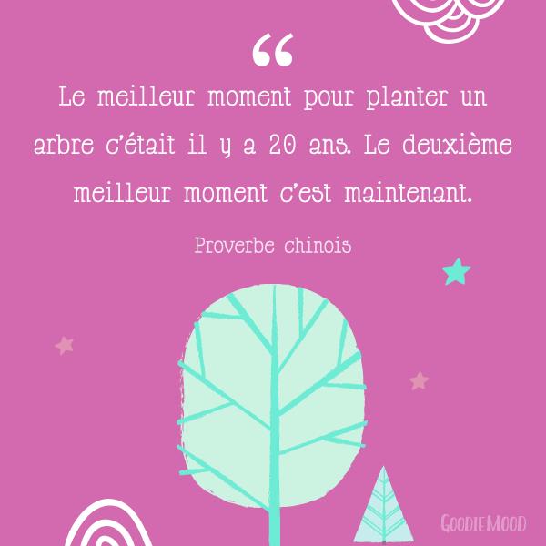 """""""Le meilleur moment pour planter un arbre c'était il y a 20 ans. Le deuxième meilleur moment c'est maintenant."""" Proverbe chinois 💫 50 citations inspirantes pour rester motivée et être de bonne humeur ! ⭐️ Sur Goodie Mood, le blog Feel Good et Créativité 💗 #citation #proverbe #blog #illustration #graphisme #designgraphique #inspiration #motivation #bienetre #bonnehumeur #optimisme #positif #phrases #fille #girly #printable"""