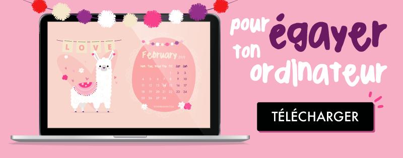 fond d'écran/ calendrier gratuit Lama pour février 2019 - pour ordinateur