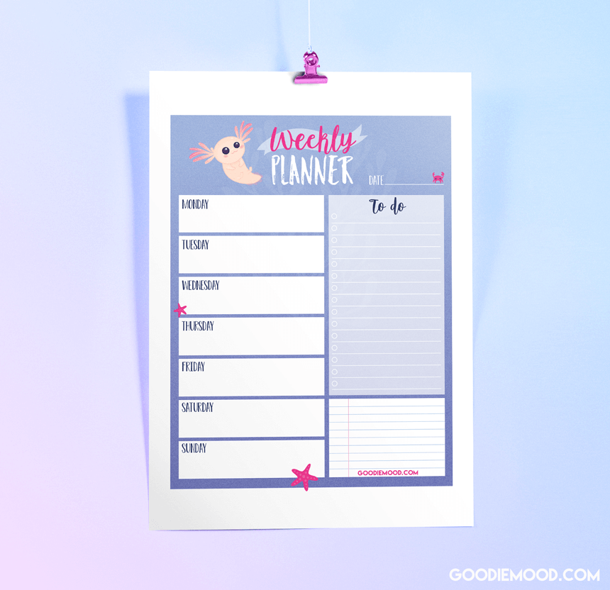 "Imprime ton planning e la semaine gratuitement ""axolotl"""