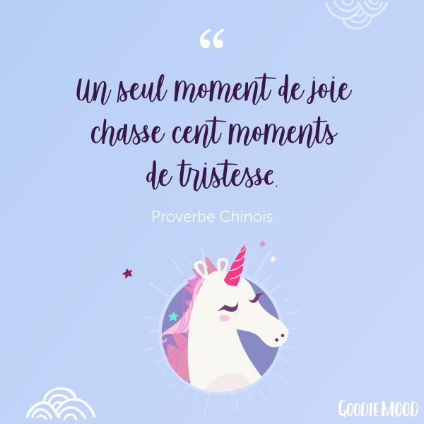 """""""Un seul moment de joie chasse cent moments de tristesse."""" Proverbe Chinois"""