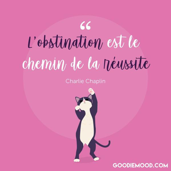 """""""L'obstination est le chemin de la réussite"""" Charlie Chaplin"""