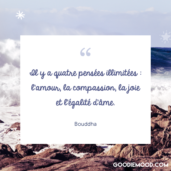 """""""Il y a quatre pensées illimitées : l'amour, la compassion, la joie et l'égalité d'âme."""" - Bouddha"""