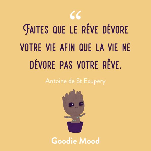 """""""Faites que le rêve dévore votre vie afin que la vie ne dévore pas votre rêve."""" #citation #inspiration #feelgood #reve"""