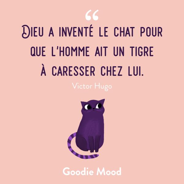 """""""Dieu a inventé le chat pour que l'homme ait un tigre à caresser chez lui."""" #chat #citation #inspiration #feelgood"""
