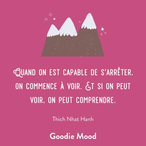 """""""Quand on est capable de s'arrêter, on commence à voir. Et si on peut voir, on peut comprendre."""" Thich Nhat Hanh #citation #inspiration #Meditation"""