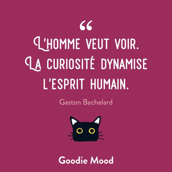"""""""L'homme veut voir. La curiosité dynamise l'esprit humain."""" - Gaston Bachelard #citation #inspiration #feelgood"""