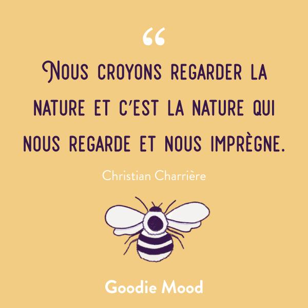 """""""Nous croyons regarder la nature et c'est la nature qui nous regarde et nous imprègne."""" #citation #inspiration #feelgood #nature"""