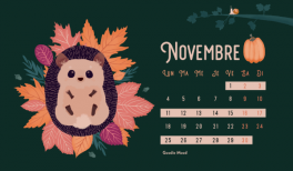 Calendrier Hérisson mignon à télécharger gratuitement pour novembre 2019 - Goodie Mood le blog Feel Good