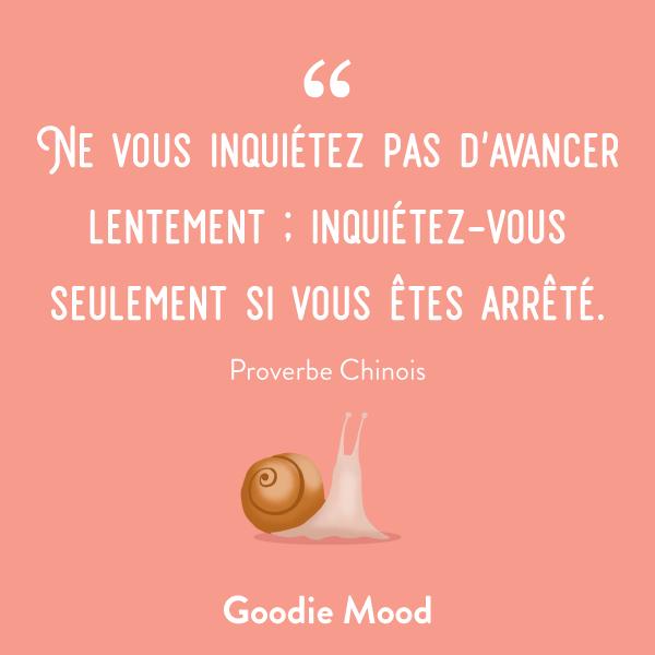 Ne vous inquiétez pas d'avancer lentement ; inquiétez-vous seulement si vous êtes arrêté. #citation #proverbe #feelgood #inspiration