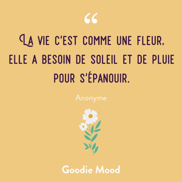 """""""La vie c'est comme une fleur, elle a besoin de soleil et de pluie pour s'épanouir."""" #citation #feelgood #inspiration"""