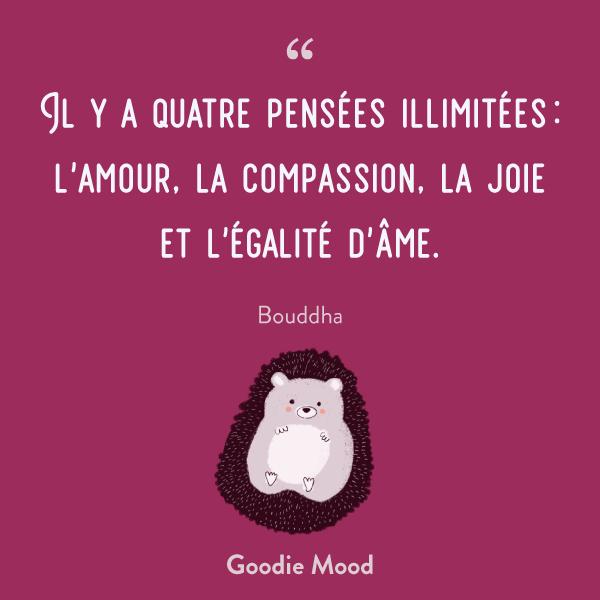 Il y a quatre pensées illimitées : l'amour, la compassion, la joie et l'égalité d'âme. Bouddha
