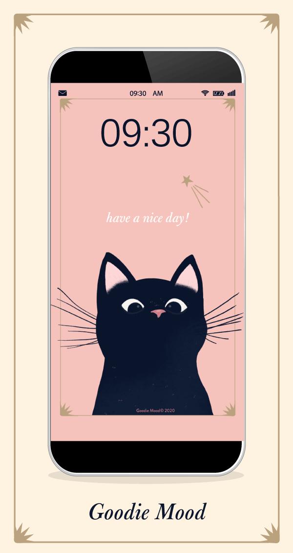 Fond d'écran chat pour téléphone à télécharger ! #wallpaper #chat #magie