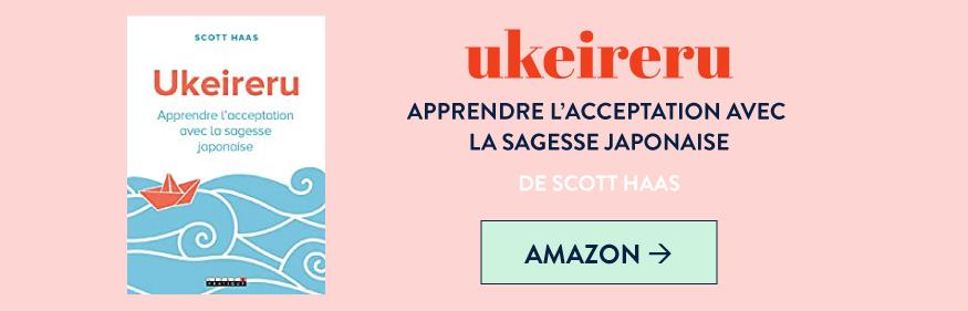 """Livre """"Ukeireru"""" de Scott Haas sur l'acceptation japonaise"""