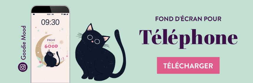 telechargez votre fond d'ecran pour decembre 2020 - ficelle le petit chat #wallpaper
