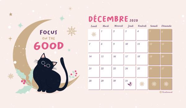 calendrier pour decembre 2020 chat