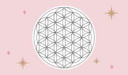 La symbolique de la Fleur de Vie